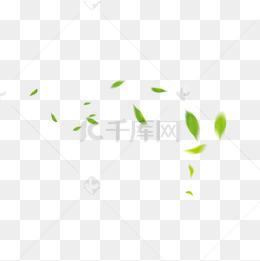 綠色漂浮葉子裝飾