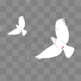 卡通手繪白鴿下載