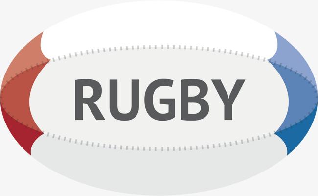 新西兰文化橄榄球体育