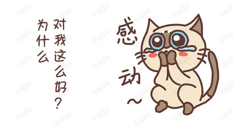 小模版感动猫咪卡通配图表情下载各种搞笑动图图片