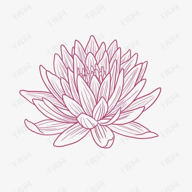 手绘风春天素描菊花素材图片免费下载 高清psd 千库网 图片编号10135768图片