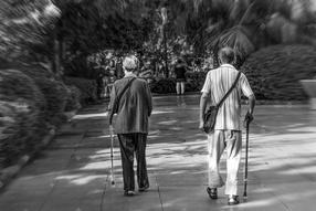 一对老年夫妻并肩在公园散步