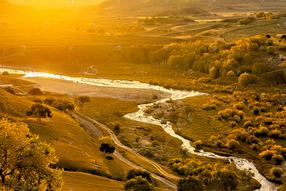 河流树木和阳光的照片