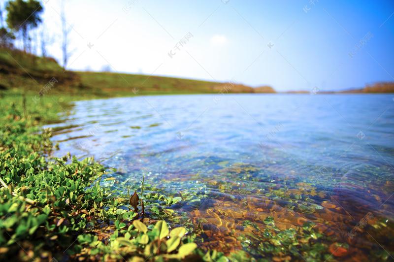 春天野外风景之小湖的景色