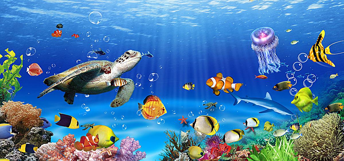 图片 海报背景 > 【psd】 海底背景  分类:自然/风景 类目:其他 格式