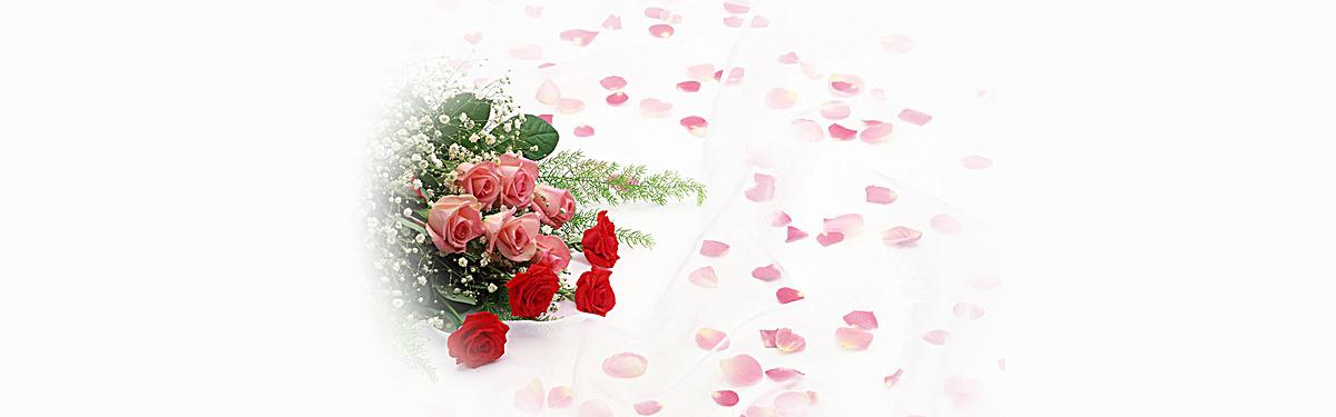 创意玫瑰花海报背景图片