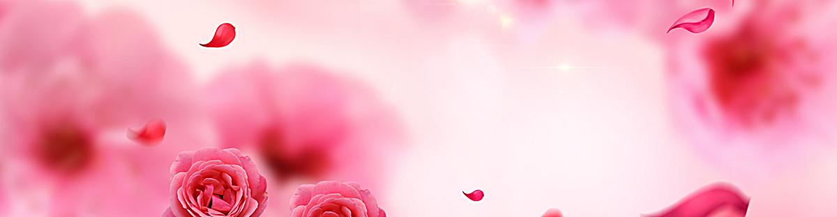 红色玫瑰背景banner图片背景素材免费下载,图片编号2