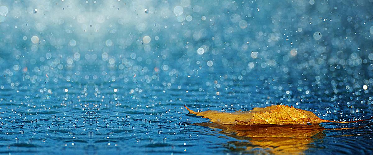 图片 海报背景 > 【psd】 雨天背景  分类:自然/风景 类目:其他 格式