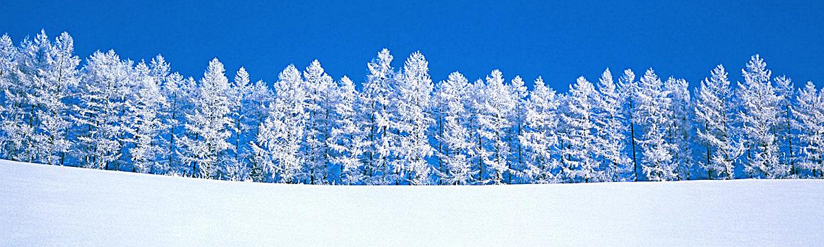 图片 > 【psd】 冬天雪景banner创意设计  分类:其他 类目:其他 格式