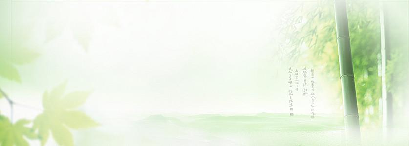 淘宝1920大图背景绿色竹炭竹林春季