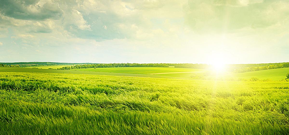 图片 蓝天白云 > 【jpg】 草原蓝天白云  分类:自然/风景 类目:其他