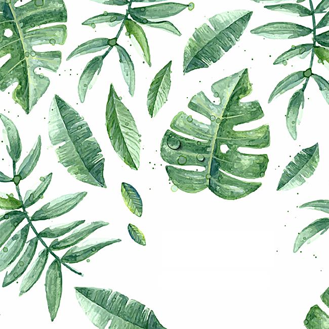 90设计提供手绘小清新叶子植物设计素材下载,高清psd格式.