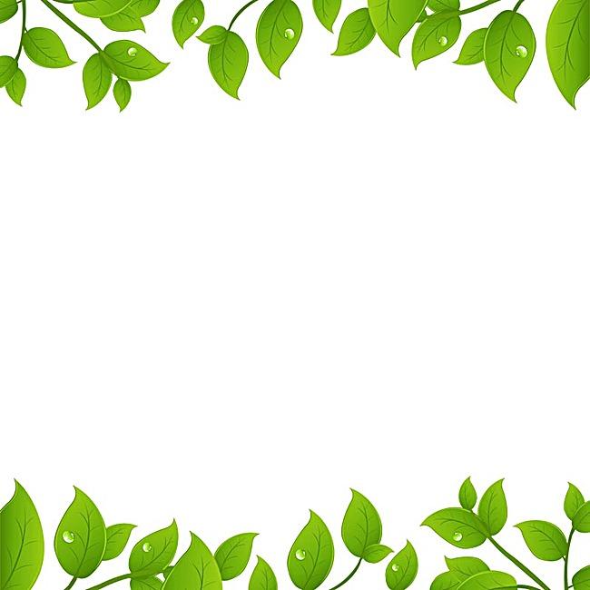 白底绿叶背景