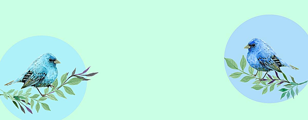 水彩手绘水墨鹦鹉文艺背景