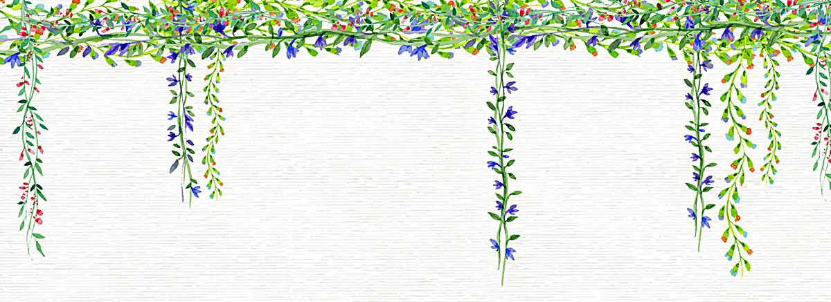 小清新文艺水彩手绘藤条花藤花朵背景