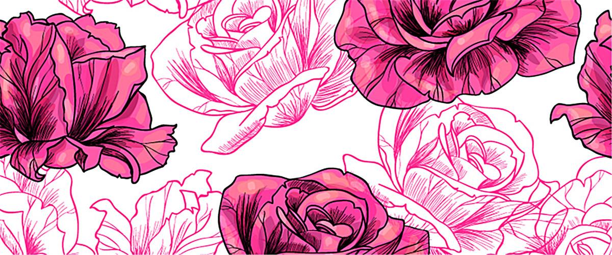 精美玫瑰手绘图