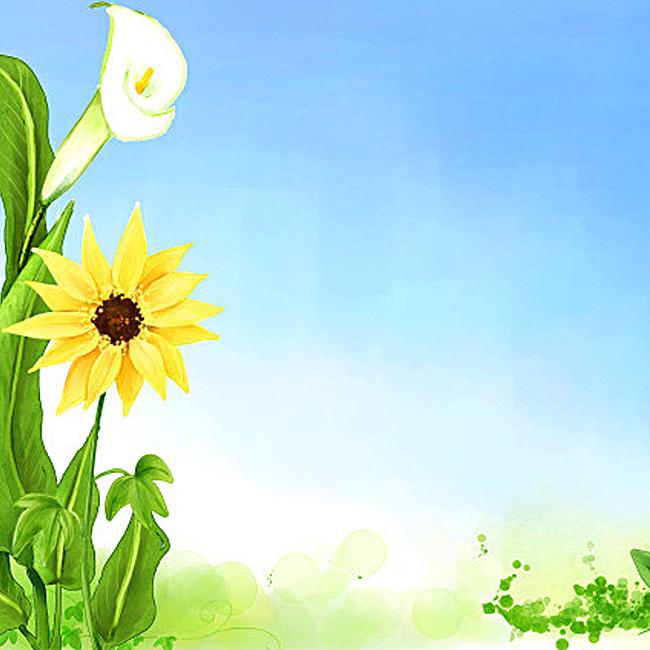 清新唯美向日葵背景图