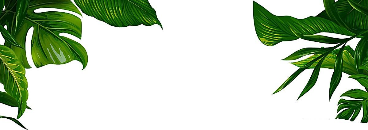 简约药房素材医院banner装饰jpg背景-90v药房绿色树叶窗口设计图片图片