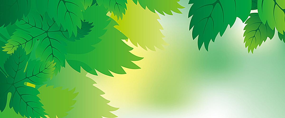 绿色清新叶子背景图