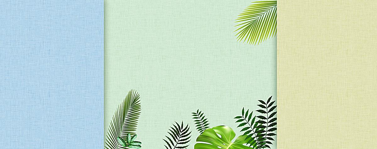文艺清新树叶绿叶热带雨林背景
