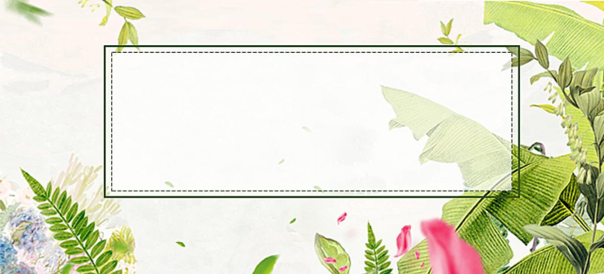 热带植物背景图