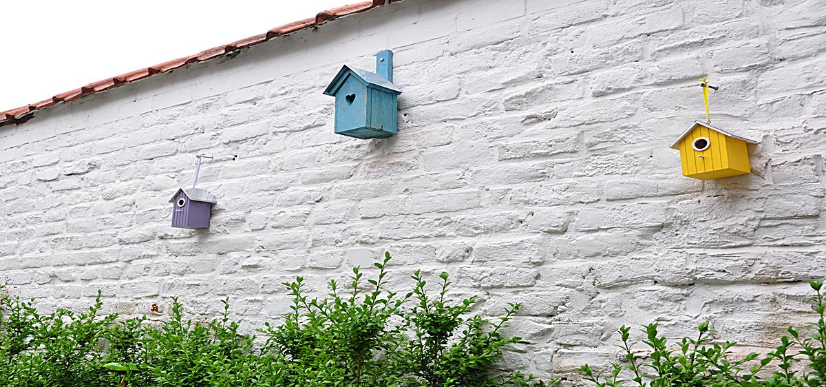 小清新文艺白墙小房子背景