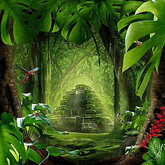 图片 海报背景 > 【jpg】 绿色森林背景  分类:艺术字体 类目:其他