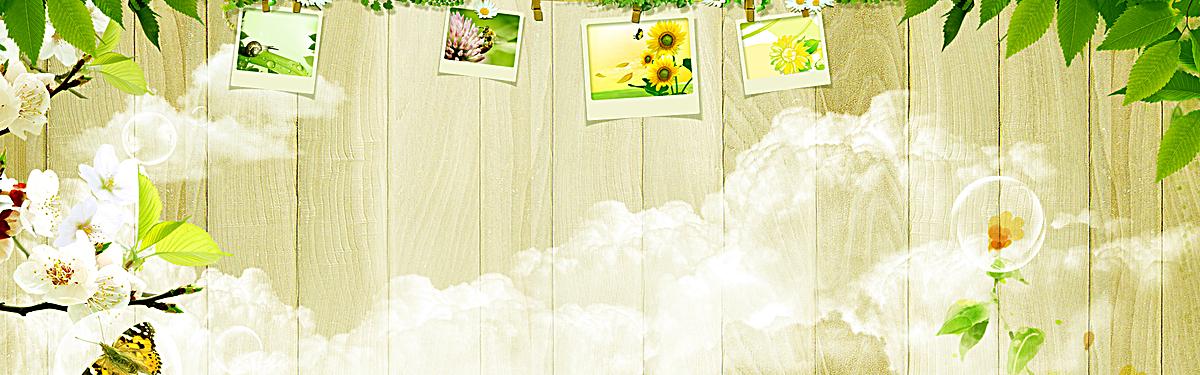 小清新文艺照片树叶背景图片