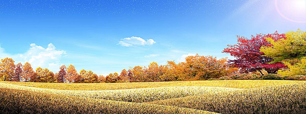 图片 > 【jpg】 蓝天草地森林背景  分类:自然/风景 类目:其他 格式:j