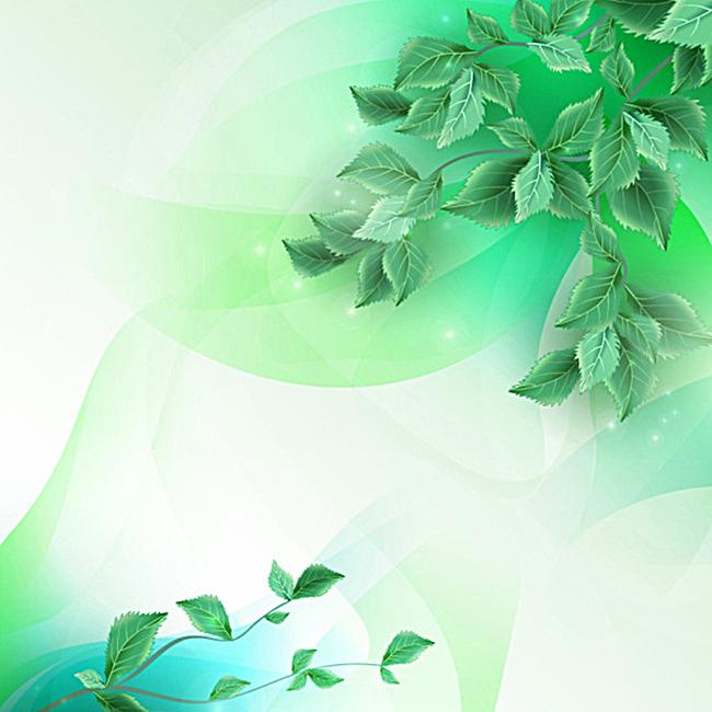 清新唯美树叶边框背景图jpg素材-90设计