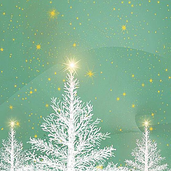 清新光效雪树背景图
