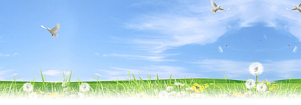 蓝天白云蒲公英淘宝网站背景图图片