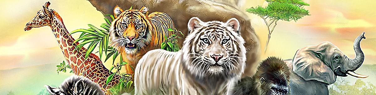 90设计提供动物世界海报banner背景设计素材下载,高清psd格式.