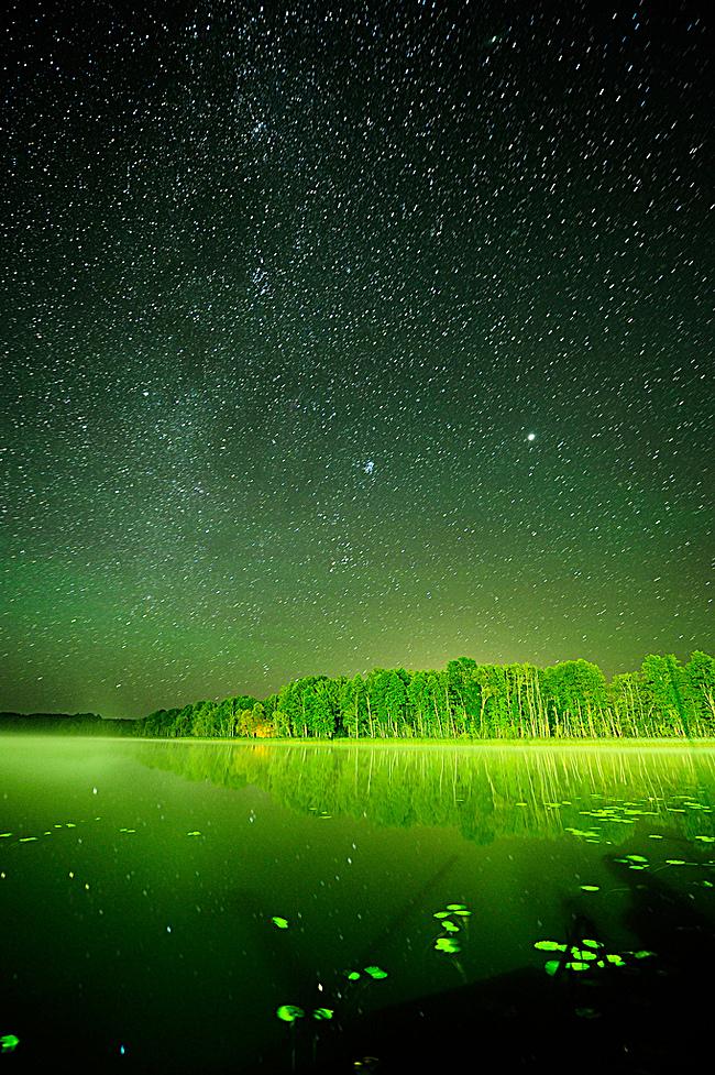 图片 > 【jpg】 绿光森林h5背景  分类:艺术字体 类目:其他 格式:jpg