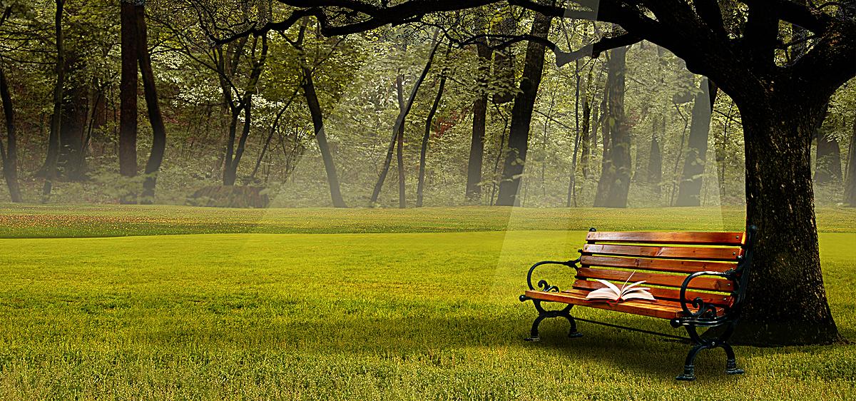 大自然背景椅子书风景绿色春天海报banner