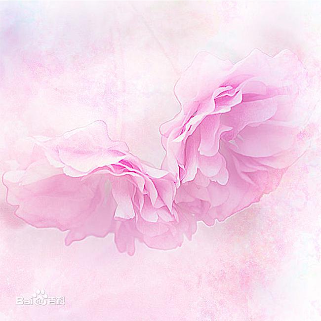 唯美粉色手绘背景图