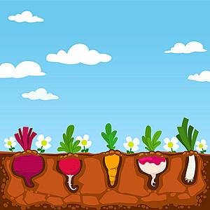 卡通蓝天白云菜园背景图片