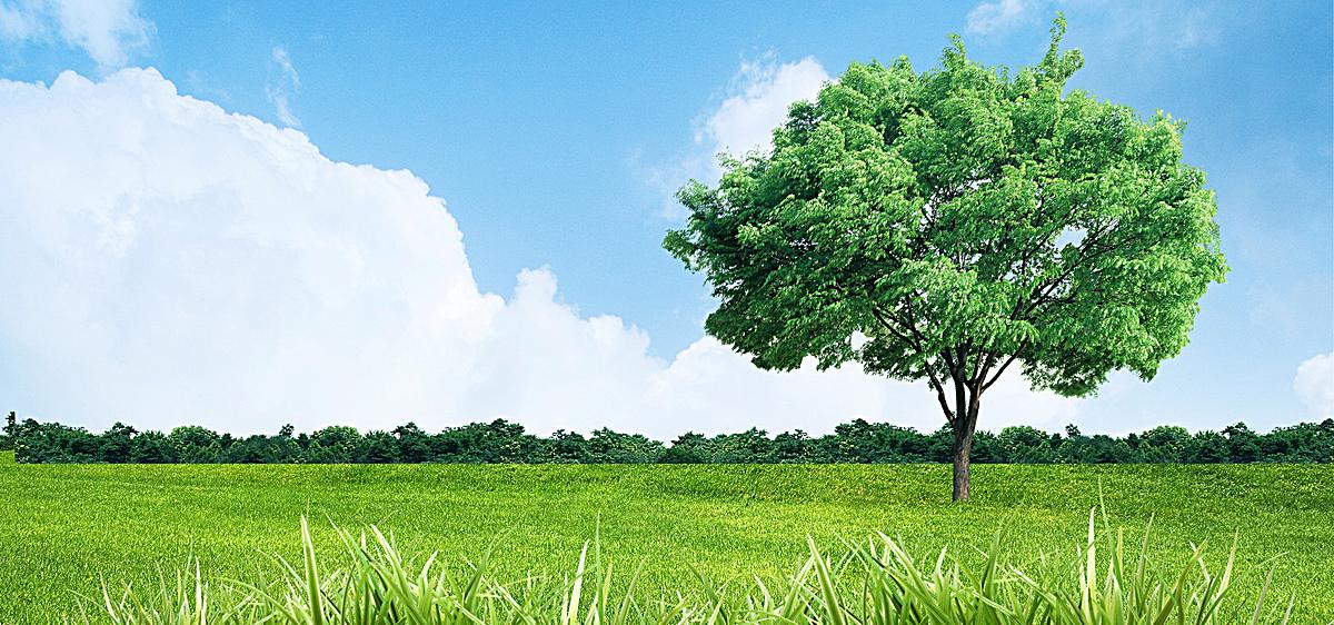 蓝天白云绿草地树木环保背景大自然海报banner