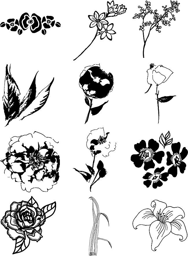 花卉黑白稿