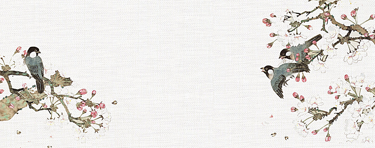 古风花鸟工笔画背景图片