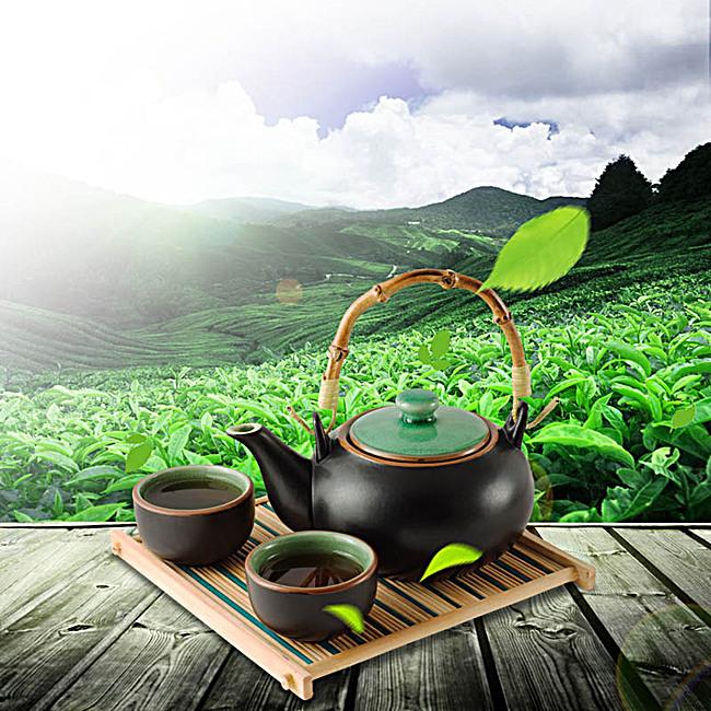 茶道茶園風景主圖背景