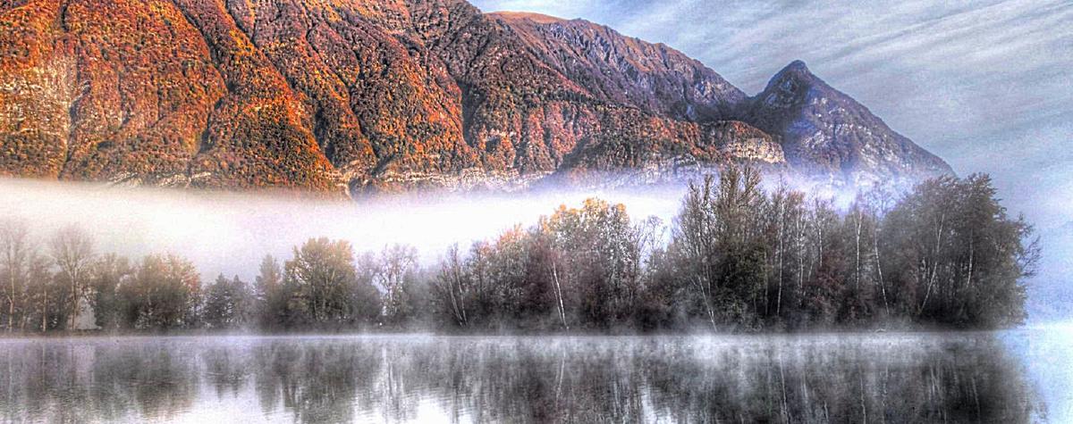 森林雾气背景
