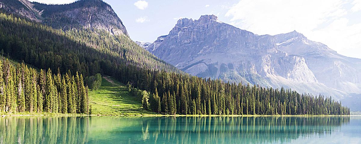 图片 > 【jpg】 湖泊森林高山背景  分类:艺术字体 类目:其他 格式