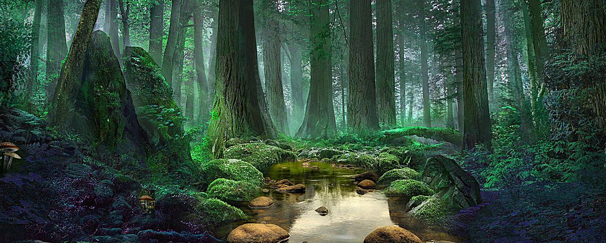 图片 > 【psd】 森林banner背景  分类:艺术字体 类目:其他 格式:psd