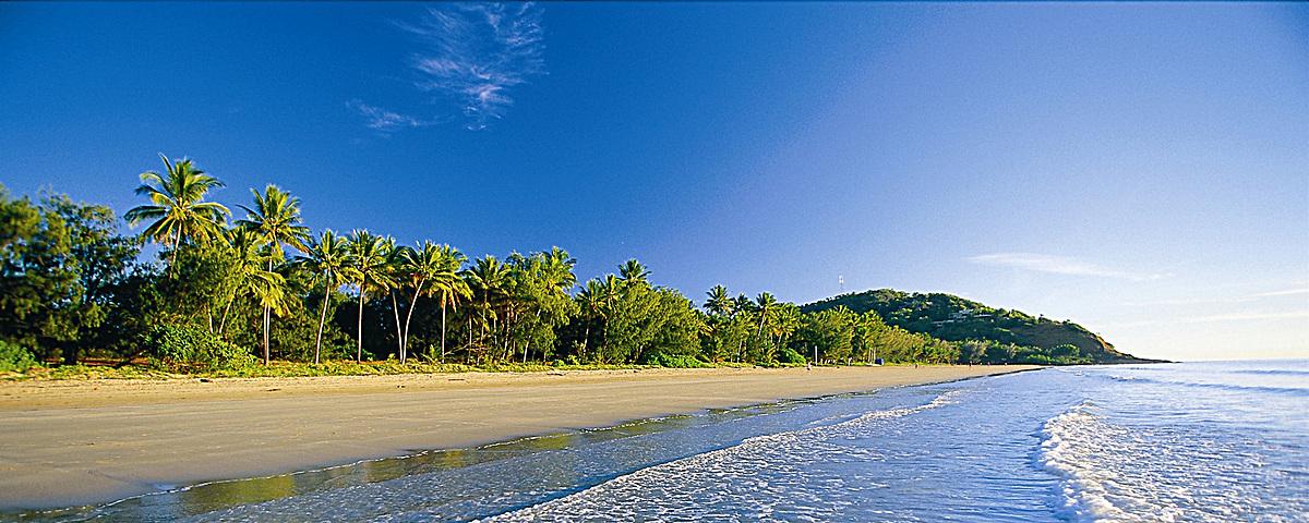 蓝天大海绿色森林背景