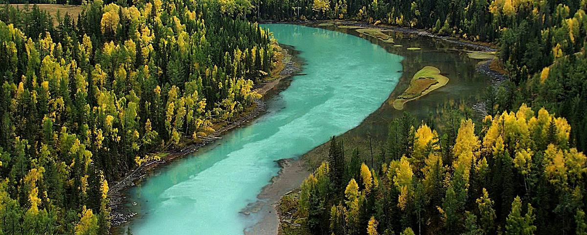 绿色森林蓝色小溪背景