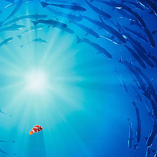 深海鱼群护肤品背景图