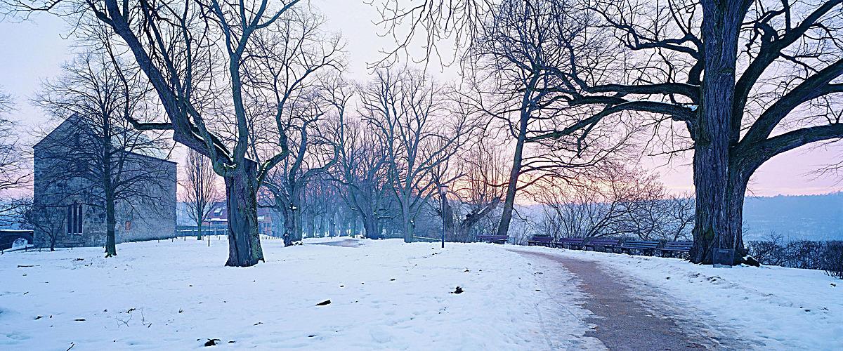 大气冬季乡村雪景海报背景图
