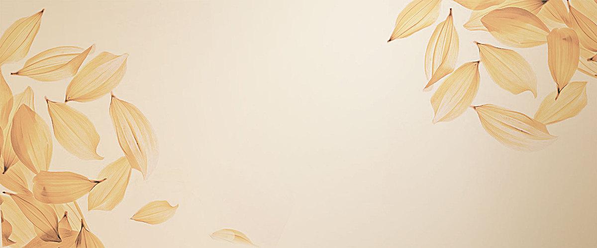 1920*800 90设计提供浪漫唯美叶子珠宝海报背景设计素材下载,高清psd