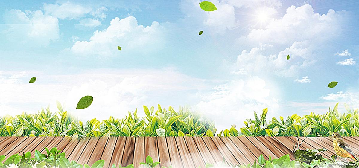 1920*900 90设计提供淘宝文艺清新绿色食品背景海报设计素材下载,高清